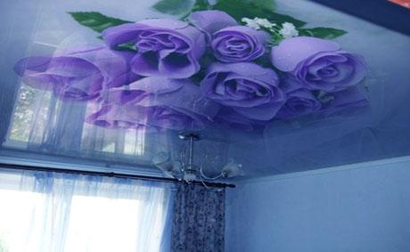 peindre un plafond tres abime estimation travaux maison landes entreprise yxtbu. Black Bedroom Furniture Sets. Home Design Ideas